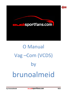 Manual Vag-Com by brunoalmeid V2.0