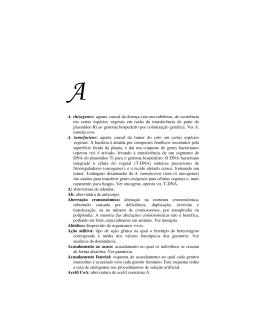 A. rhizogenes: agente causal da doença raiz-em-cabeleira, de