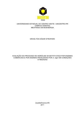 erivelton césar stroparo - Universidade Estadual do Centro