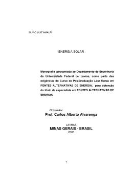 Prof. Carlos Alberto Alvarenga MINAS GERAIS - BRASIL