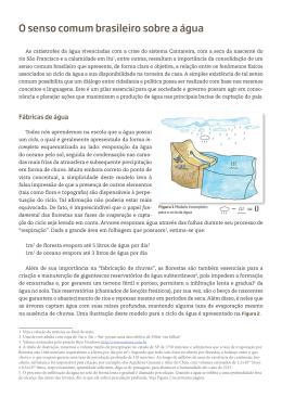 O senso comum brasileiro sobre a água