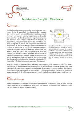 Metabolismo Energético Microbiano.indd