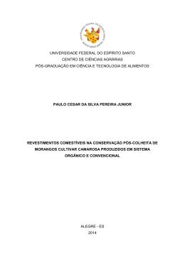 Dissertacao.Paulo Cesar da Silva Pereira Junior