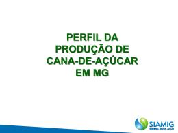 PERFIL DA PRODUÇÃO DE CANA-DE-AÇÚCAR EM MG