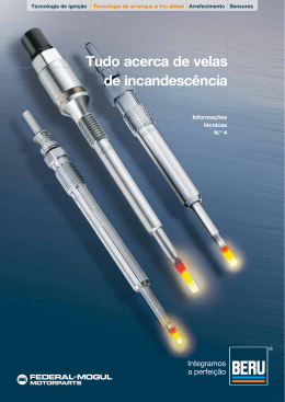 Tudo acerca de velas de incandescência - BERU® by Federal