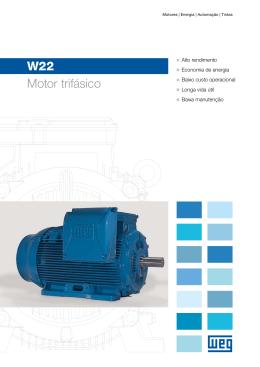 W22 Motor trifásico