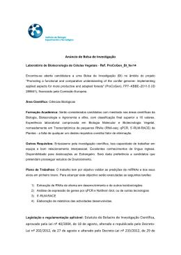 Anúncio de Bolsa de Investigação Legislação e