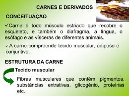 CARNES E DERIVADOS CONCEITUAÇÃO Carne é todo músculo