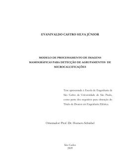 EVANIVALDO CASTRO SILVA JÚNIOR Orientador: Prof. Dr