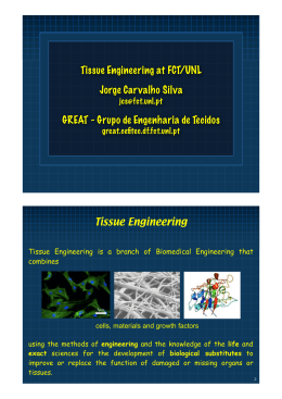 Tissue Engineering at FCT/UNL Jorge Carvalho Silva GREAT