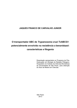 JAQUES FRANCO DE CARVALHO JUNIOR O transportador ABC