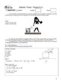 Gabarito -Física – Grupos H e I