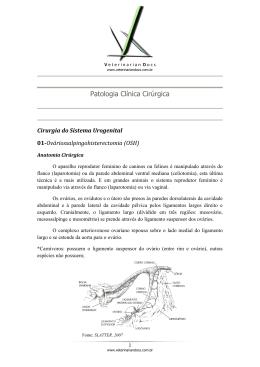 Patologia Clínica Cirúrgica