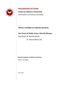 RELATORIO ESTAGIO Ana Teresa Marques