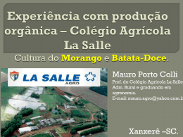 Colégio Agrícola La Salle Morango – Batata-Doce