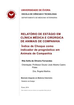 RELATÓRIO DE ESTÁGIO EM CLÍNICA MÉDICA E CIRÚRGICA DE