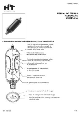 manual de falhas na bexiga e membrana - HT