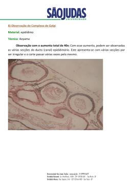 8) Observação do Complexo de Golgi