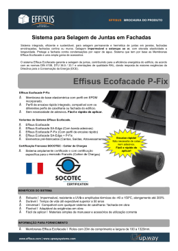 Effisus Ecofacade P-Fix