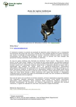 Baixar em PDF - Aves de Rapina Brasil