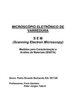 MICROSCÓPIO ELETRÔNICO DE VARREDURA S E M