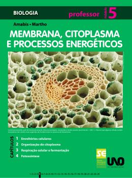 MEMBRANA, CITOPLASMA E PROCESSOS ENERGÉTICOS
