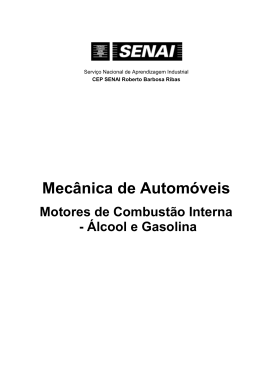 Motores de Combustão Interna – Álcool e Gasolina