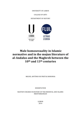 Male homosexuality in Islamic normative and in the mujun literature