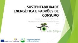 SustentAbilidAde EnergéticA e PAdrões de consumo