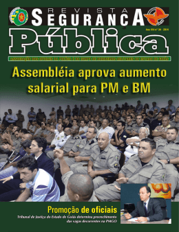 Seguranca Publica_34Internet