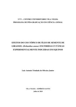dissertação fase inicial com resumo broxura