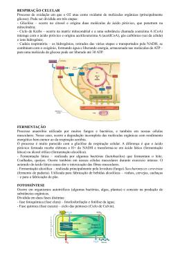 RESPIRAÇÃO CELULAR Processo de oxidação em que o O2 atua