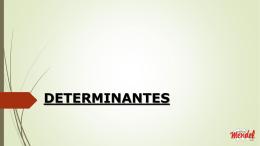 matrizes - determinantes