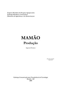 Mamão Produção - consultoria especializada