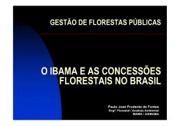 O IBAMA E AS CONCESSÕES FLORESTAIS NO BRASIL