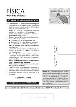 Física - UFMG 2006