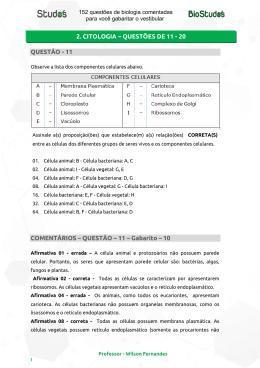 QUESTÃO - 11 COMENTÁRIOS – QUESTÃO – 11