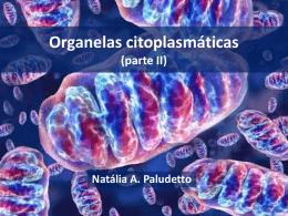BIOLOGIA_PROENEM_Aula11_04.04.14