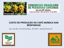 CUSTO DE PRODUÇÃO DO CAFÉ ARÁBICA NAS MONTANHAS