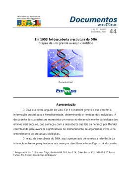 Em 1953 foi descoberta a estrutura do DNA Etapas