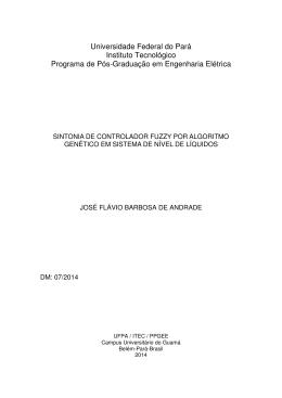 Universidade Federal do Pará Instituto Tecnológico Programa de