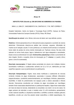 Anais Fórum de lâminas enapave 2015