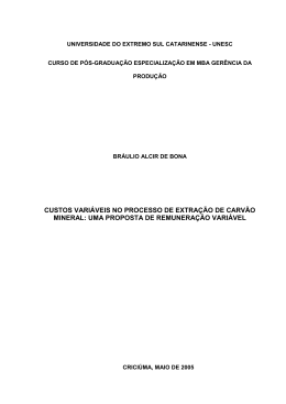 CUSTOS VARIÁVEIS NO PROCESSO DE EXTRAÇÃO DE CARVÃO