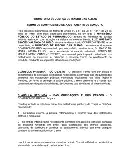 PROMOTORIA DE JUSTIÇA DE RIACHO DAS ALMAS TERMO DE