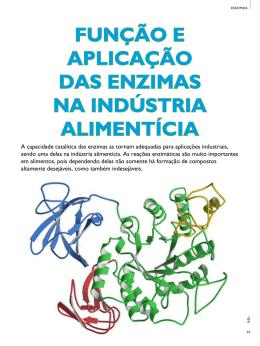 função e aplicação das enzimas na indústria alimentícia