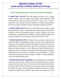 Os Dez Mandamentos para o Bom Uso das Plantas Medicinais*