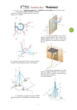 Laboratório de Física 2 - Aula de Exercícios 1 e 2 – Equilíbrio de