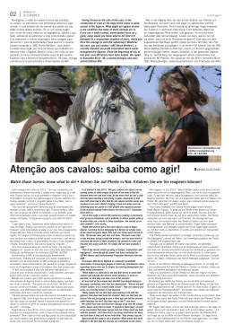Atenção aos cavalos: saiba como agir!