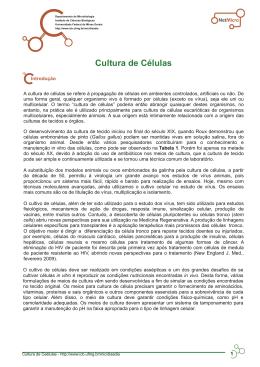 Cultura de Células - Universidade Federal de Minas Gerais