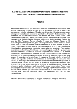 PADRONIZAÇÃO DE ANÁLISES MORFOMÉTRICAS DE